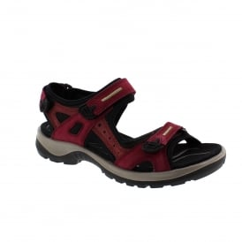 Ecco Offroad 069563-59277 Womens Walking Sandals